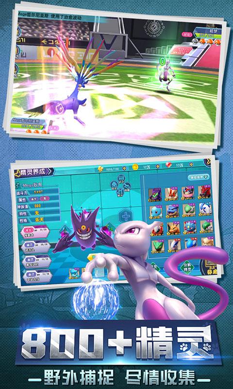 口袋喵喵(海量特权)游戏截图5